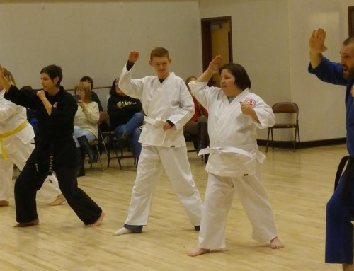 Adaptive Karate Program