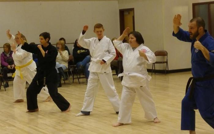 adaptive-karate