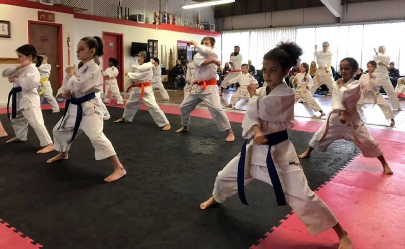 Kids Adults Karate